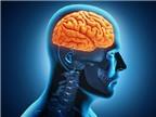 Phương pháp mới chữa liệt do đột quỵ gây ra