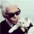 Nhà thiết kế thời trang nổi tiếng muốn kết hôn với ... mèo
