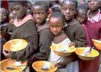Quanh chuyện thừa và thiếu thực phẩm