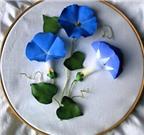 Làm hoa vải asagao gắn tranh treo tường thật độc đáo