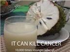 Mãng cầu xiêm chữa ung thư: Chưa thuyết phục