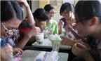 Chưa phát hiện axit maleic trong trà sữa trân châu