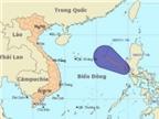Áp thấp nhiệt đới đã vào vùng cách Hoàng Sa 830km