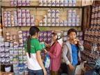 Nhiều hãng sữa không liên can