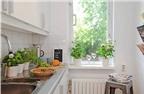 5 người tình xanh của phong thủy nhà bếp