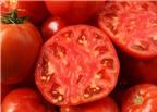 Cà chua giúp giảm ung thư