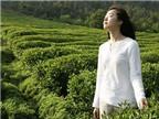 Độc chiêu' giảm cân từ thảo dược thiên nhiên