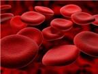 Thuốc điều trị bệnh thiếu máu