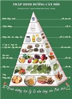 Kích hoạt năng lượng cơ thể với tinh chất nhân sâm kết hợp vitamin và khoáng chất