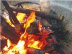 Bắp chuối rừng lam với cá suối - Món ngon đãi khách