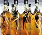 Rượu thuốc trị đau nhức xương