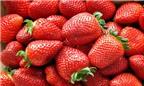 4 nguồn trái cây giàu vitamin C