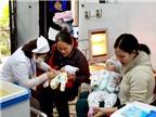 Cung ứng đủ vắcxin cho nhu cầu phòng bệnh thủy đậu