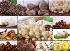 Ăn nhiều nấm chữa được ung thư