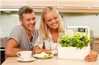 Thiết bị giúp tự trồng rau mà không cần chăm sóc