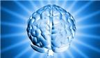 Gen bệnh Alzheimer ảnh hưởng nhiều nhất tới phụ nữ