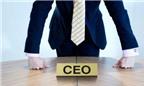 3 việc cơ bản của một CEO khởi nghiệp