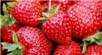 10 thực phẩm chống lại bệnh ung thư