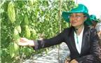 Làm nông thôn mới kết hợp du lịch sinh thái, thu tiền tỷ