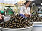 Chọn thực phẩm thông minh để tránh bệnh truyền nhiễm mùa hè