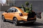 BMW X3 bán tải độc nhất