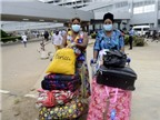 Nguy cơ lây nhiễm Ebola qua đường hàng không ở mức thấp