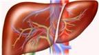 Phòng ngừa và điều trị virus viêm gan A