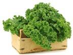Top 10 thực phẩm bổ dưỡng nhất thế giới