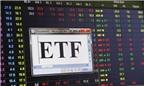 Ẩn số thành công của ETF nội