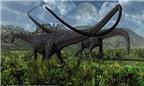 Khủng long kỷ Jura chia thức ăn như thế nào?