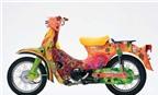 Loạt Honda Cub 50 độ nghệ thuật chưa từng thấy