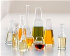 Những loại tinh dầu giúp điều trị bệnh viêm xoang