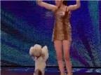 Cười nghiêng ngả với màn biểu diễn thông minh của chú chó Anh