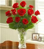 Những cách cắm hoa hồng đẹp cho bạn để bàn