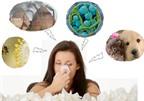 Hạn chế viêm mũi dị ứng không khó!