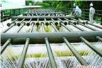 REE nâng sở hữu Cấp nước Gia Định lên hơn 19%