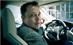 Elon Musk đã