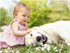 Cách giúp trẻ an toàn khi nhà nuôi chó