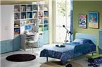 Đặt tủ sách của con ở đâu để tốt cho đường học vấn?