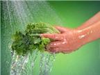 Mẹo rửa sạch mọi loại rau đúng cách và sai lầm khi rửa rau