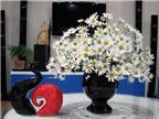 Những cách chọn bình và cắm hoa cúc độc đáo để trang trí nhà