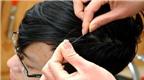 Bài thuốc chữa bạc tóc