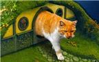 Tròn mắt với căn nhà đồ chơi cho mèo theo phong cách