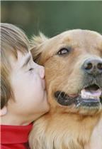 Lợi ích sức khỏe khi nuôi chó