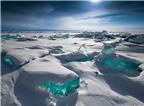 Cảnh đại dương, hồ, mương đóng băng tuyệt đẹp