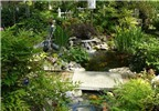 Sân vườn dễ thương với những thiết kế hồ nước nhỏ xinh