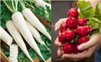 4 loại rau quen thuộc là thần dược ngăn ngừa và trị táo bón
