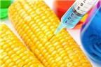 EU thông qua quy định gây tranh cãi về thực phẩm biến đổi gen