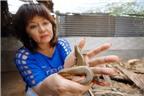 Bà chủ trại rắn mối tiết lộ bí quyết thu trăm triệu mỗi năm