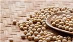 Những công dụng của đậu nành với sức khỏe con người